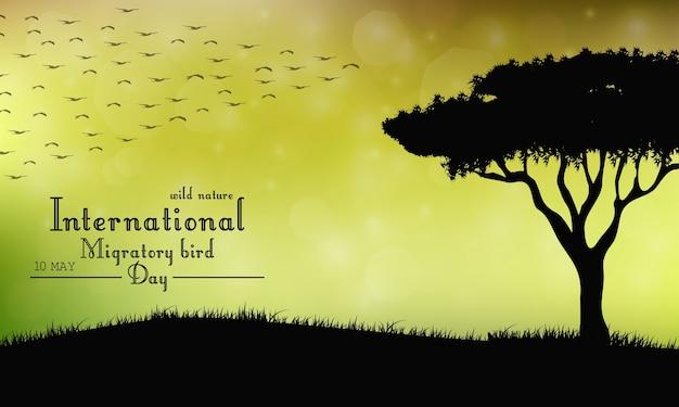 Einwanderungstag der vögel auf sonnenunterganghintergrund