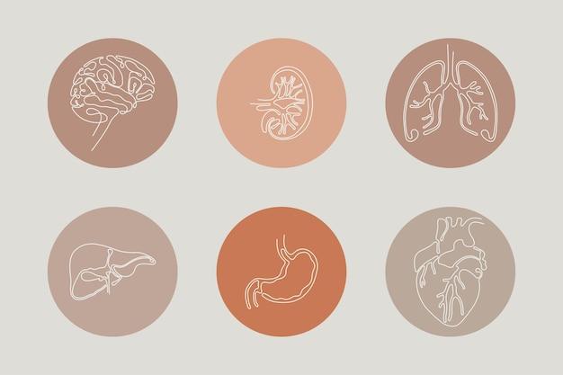 Einzeilige instagram-icon-set für inneres organ