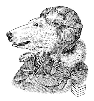 Eisbär verkleidet in pilot oder flieger