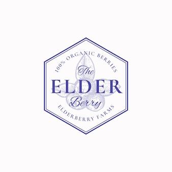 Elderberry farm abzeichen oder logo-vorlage. hand gezeichnete beeren mit blättern skizze mit retro-typografie und rändern.