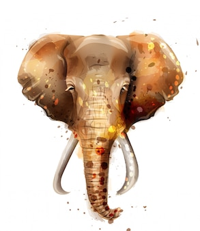 Elefant-aquarell