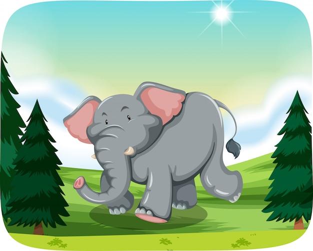 Elefant in der waldszene