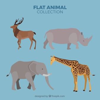Elefant und andere wilde tiere eingestellt