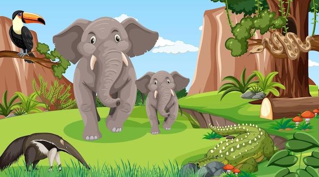 Elefantenfamilie mit anderen wilden tieren in der waldszene