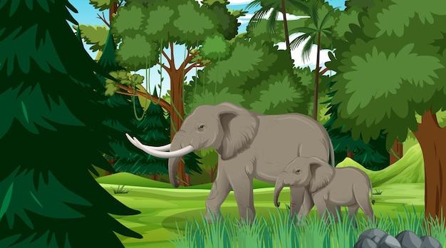 Elefantenmutter und -baby in der wald- oder regenwaldszene mit vielen bäumen
