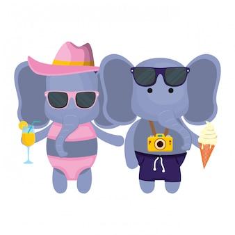 Elefantenpaare mit fotoapparat und cocktail