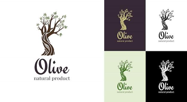 Elegante ikone des eleganten olivenbaums. baum logo design-konzept. olivenbaumschattenbildillustration. emblem der natürlichen olivenölbaumpflanze