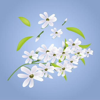 Elegante schöne weiße blumenblumen-designillustration