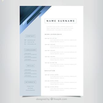 Elegante und minimalistische curriculum-vorlage