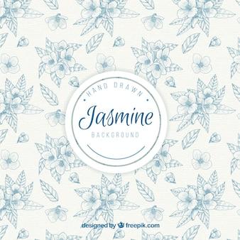 Elegante vintage hand gezeichnet jasmin hintergrund