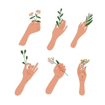 Elegante weibliche hände, die blumen und blätter auf zweigen halten. flache illustration.