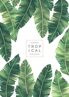 Eleganter tropischer hintergrund mit schönen blättern