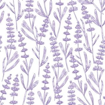 Elegantes nahtloses muster mit lavendelblüten handgezeichnet