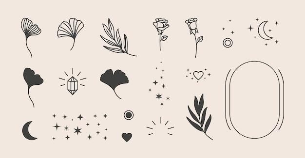 Elemente für das logo-design - rose, ginkgo biloba-blatt, sterne, mond, rahmen. vektorillustration in einem minimalen linearen stil. um logos, drucke, muster, poster und andere designs zu erstellen