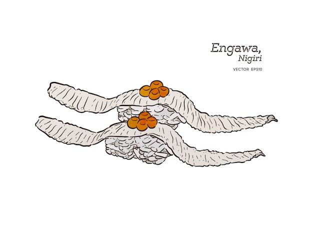 Engawa nigiri, fluke flossenfischsushi. skizze vektor hand zeichnen.