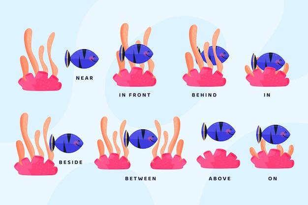 Englische präpositionen mit abgebildeten fischen