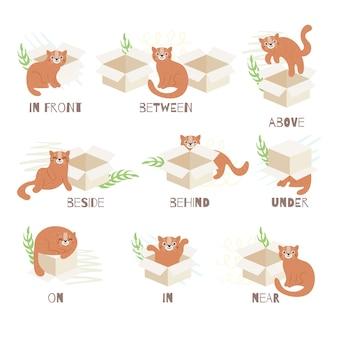 Englische präpositionen mit niedlicher illustrierter katze