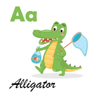 Englisches alphabet mit tieren für kinder. alligator abc auf weißem isoliertem hintergrund
