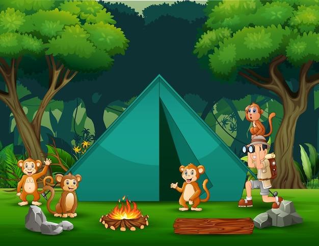 Entdeckerjunge mit einigen affen auf der campingplatzillustration