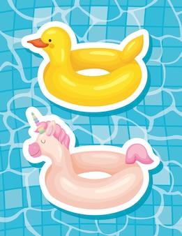 Ente und einhorn schwimmt
