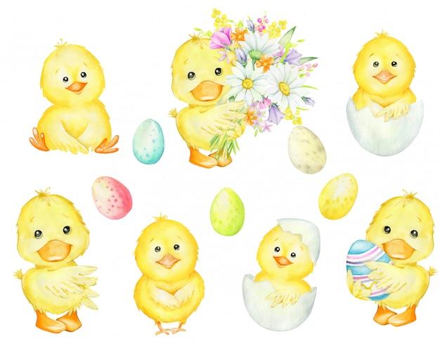 Entlein mit einem blumenstrauß, mit einem osterei, hühnern, in einer schale, osterfarbenen eiern. aquarell-set, tiere, eier für die osterferien.
