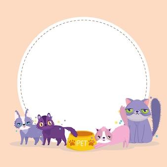 Entzückende katzen streicheln tiere mit futter und leere runde fahnenvektorillustration