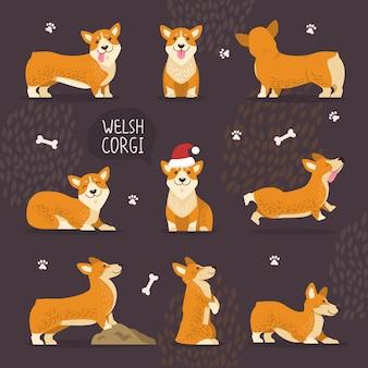 Entzückende waliser-corgi-hunde mit gelbem pelz-set