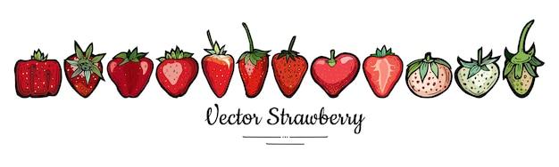 Erdbeer-illustrationssatz-isolat auf weiß