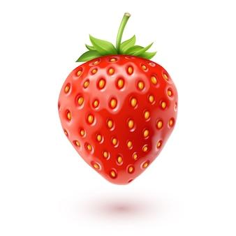 Erdbeer-realistische symbol