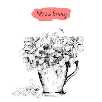 Erdbeere in einer schalenzeichnung