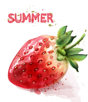 Erdbeere isoliertes aquarell