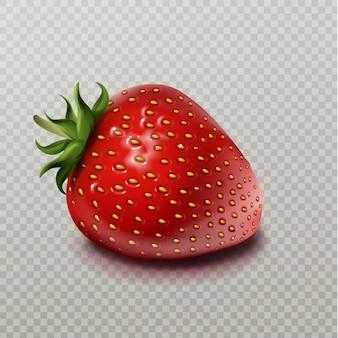 Erdbeere mit dem grünen blatt getrennt auf transparentem