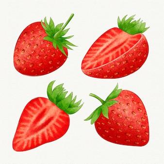 Erdbeersammlung