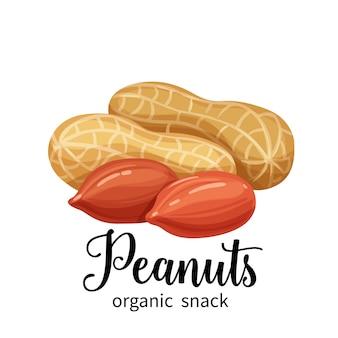 Erdnüsse im cartoon-stil