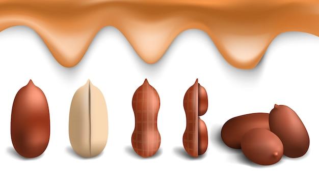 Erdnuss-icon-set. realistischer satz erdnussvektorikonen für webdesign