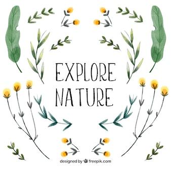 Erkunde die natur. schriftzug zitat mit floralen thema und blumen