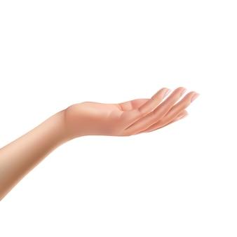 Erreichte weibliche handfläche auf isoliert realistische vektor