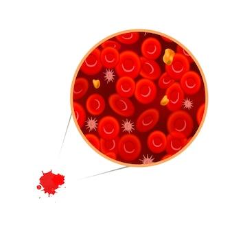 Erythrozyten mit weißen blutkörperchen und cholesterin, blutzusammensetzungskonzeptillustration auf weiß