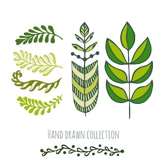 Ethnische grüne doodle blätter für frühling oder sommer dekoration, gruß und einladungskarten