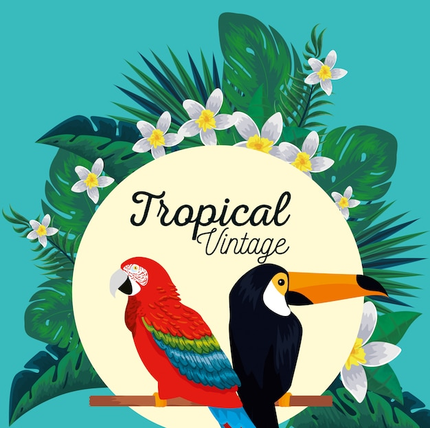 Etikett mit papageien- und tukantieren mit blüten