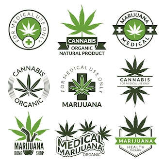Etiketten mit verschiedenen bildern von marihuana-pflanzen. heilkräuter, cannabisblatt. medizinische illustration des marihuana-betäubungsmittelabzeichens