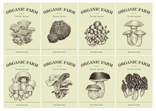 Etiketten mit verschiedenen pilzen.