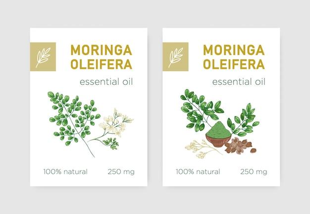 Etikettenpaket mit miracle tree oder moringa oleifera. satz tags mit essbarer krautiger pflanze, die in der phytotherapie verwendet wird. botanische vektorgrafik im realistischen vintage-stil für naturprodukt.