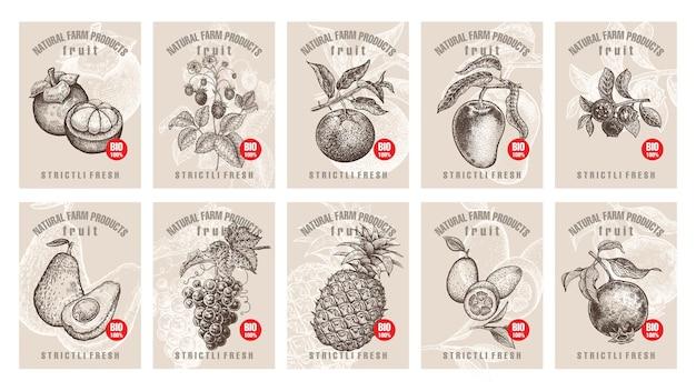 Etikettenset mit verschiedenen früchten und beeren mit aufschriften
