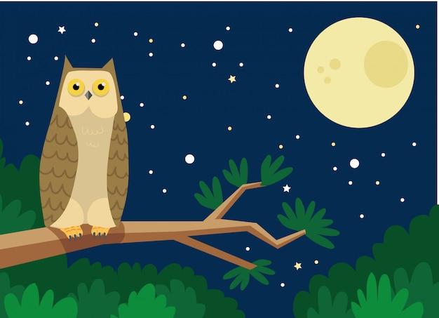 Eule in der nacht