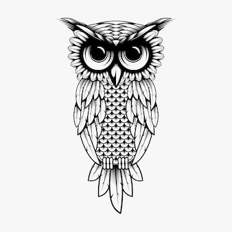 Eulenvektor-designillustration