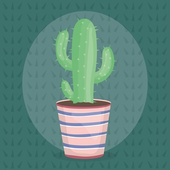Exotische kaktuspflanze im keramiktopf