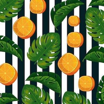 Exotische orangenfrüchte mit blatthintergrund