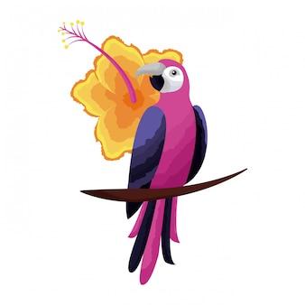 Exotische papageienvogel-hibiscusblume tropisch