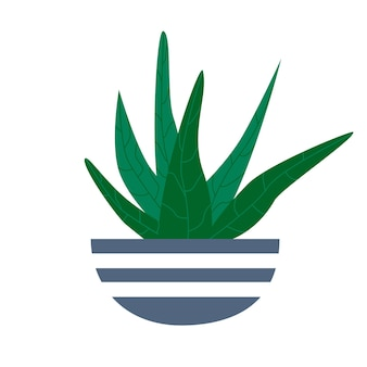 Exotische tropische zimmerpflanze in einem blumentopf. flache bunte vektorillustration.